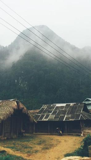 Trở về với núi - Văn học - Tiểu thuyết