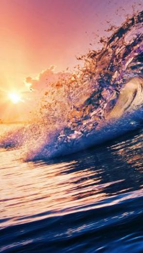 Con sóng màu hổ phách - Văn học - Tiểu thuyết