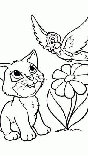 Mèo và chim yểng - Thiếu Nhi